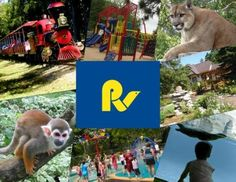 Riverview Park and Zoo visit the zoo and learn about all 48 different species of animals that live here. Fun Places For Kids, Places To Go, Riverview Park, Ontario Place, Peterborough Ontario, What To Do Today, Free Things To Do, Staycation, Day Trips