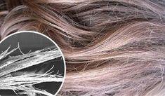 Descubre cómo reparar el cabello quemado. El uso de la planchita o el  secador ... d029469aadad