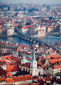 Prague, Czechia.   Check out our website for more info: http://www.noahsarkinc.com/ OR give us a call: 1-8NOAHS-ARK8 (1-866-247-2758)