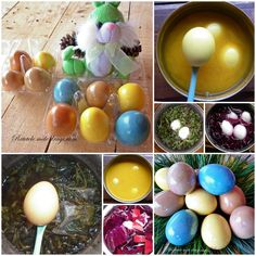 Cum coloram oua cu culori naturale Paste, Easter Ideas, Easter Eggs, Holidays, Holidays Events, Holiday, Vacation, Annual Leave, Vacations