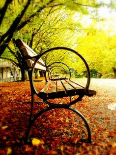 take a moment and find a park bench to breathe in the beauty around you