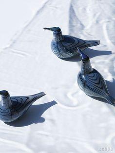 Birds by Toikka Vuono (Annual Bird 2019) iittala | scope