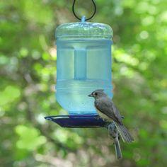 pet bird feeders & waterers