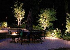 klimatyczny ogród wieczorem