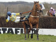 Tom Messenger 'riding' Legendary Hop is unseated at the last fence in The Free Tips Every Day On gg.com Handicap Steeple Chase at Towcester racecourse