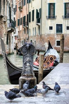 Communal water by Parker Mitchell on 500px - Venice, Italy