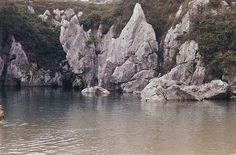 platas Gulpiyuri Asturias