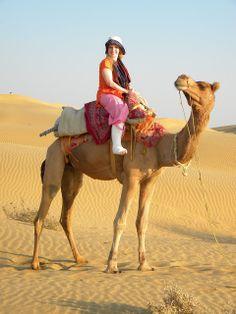 Funny+Camel | ... camel,gif camel,gif ass,wilds,riding,dangerso,funny camel,camel riding