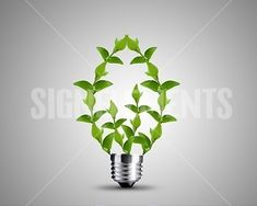 Image Details: Isignstock Contributors Stock photo of light bulb made from green Leaves , light bulb conceptual Image. Green Leaves, Light Bulb, Branding, Stock Photos, Detail, Image, Brand Management, Light Globes, Identity Branding