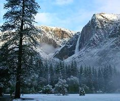 Secrets to Reserving a Yosemite Campsite - Sunset Fishing and Outdoors Camping Near Me, Tent Camping, Campsite, Yosemite Valley Camping, Zion Illinois, Niagara Falls Camping, Lake George Camping, Used Camping Trailers, Yellowstone Camping