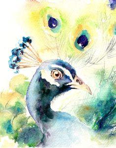 Peacock Bird Watercolor Painting Art Print, Watercolour Bird, Wall Art, Bird Illustration, Bird Art, Blue