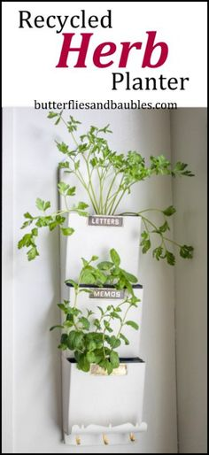 I've seen herbs grown in a variety of recycled containers – cups, jugs, bottles, cans, jars. So when I noticed my vintage letter holder just gathering dust, I decided to put it to good use. I've wanted to grow some herbs near my kitchen window for some time because it gets great light. Since the [...]