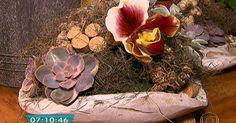 Quadro Verde: saiba como cuidar de diferentes espécies de orquídeas