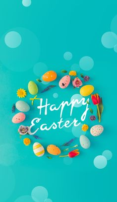 Creative Easter layout made of colorful eggs and flowers on blue background. Apple Watch Wallpaper, Iphone Wallpaper, Happy Easter Wallpaper, Easter Bunny Pictures, Easter Backgrounds, Spring Backgrounds, Seasonal Image, Easter Peeps, Stock Image