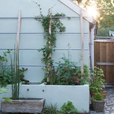 Vis à Vis tuinontwerpers van binnenplaats naar groene oase - Vis à Vis tuinontwerpers Garden Yard Ideas, Backyard, Patio, Gras, Water Features, Amazing Gardens, Garden Inspiration, Garden Design, Deco