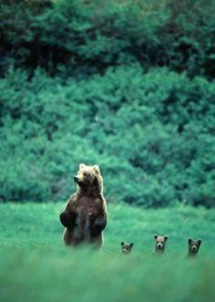 Mother, Lesa, Denise & Marcella!!!!!