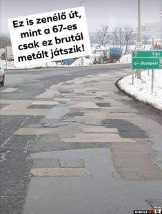 Budapest, Haha, Jokes, Funny, Husky Jokes, Animal Jokes, Funny Jokes, Hilarious, Humor