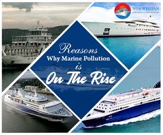 Cruise vacations promise a thrilling ride. However, all luxurious amenities & good times come at a price