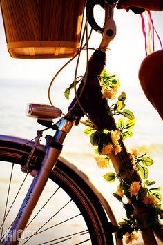 http://rioetc.com.br/oculos/bike-forever/