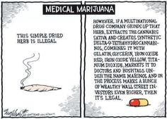 Search medical marijuana doctors and book appointments online. Get your medical marijuana recommendation and ID card through our network of physicians. Ganja, Medical Marijuana, Marijuana Facts, Medical Humor, Weed Facts, Funny Medical, Cannabis Cures Cancer, Cannabis Oil, Cannabis Growing