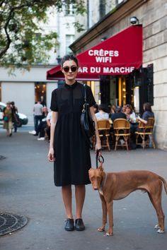 A Parisian Dog Walk