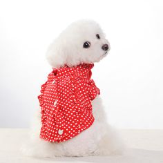 Red Polka Dots Blouse from our New Collection to be released March 20th!!!