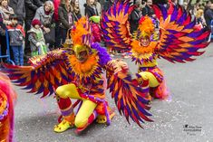 Carnival Costumes, Halloween Costumes, Halloween Stuff, Recycled Costumes, Samba, Pageant Makeup, Bird Costume, Creative Costumes, Character Costumes