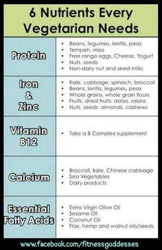 Vegetarians Needs