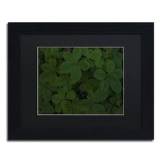 Green Leaf Abstract by Kurt Shaffer Framed Photographic Print
