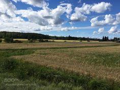 Finland beauty by Drago76 #animals #animal #pet #pets #animales #animallovers #photooftheday #amazing #picoftheday