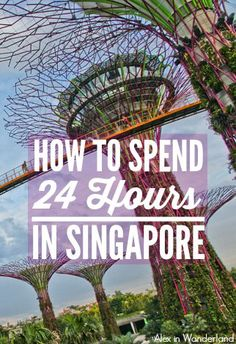 A 24-hour layover in Singapore is the perfect excuse for a little sightseeing. Here's what you can do with just one day in this vibrant city.