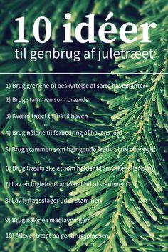 10 praktiske og kreative idéer til genbrug af juletræet. #genbrug #recycling #juletræ #christmastree #jul #christmas #genbrugjuletræ #christmastreerecycling