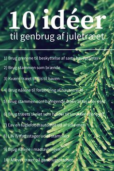 10 praktiske og kreative idéer til genbrug af juletræet. #genbrug #recycling #juletræ #christmastree #jul #christmas #genbrugjuletræ #christmastreerecycling