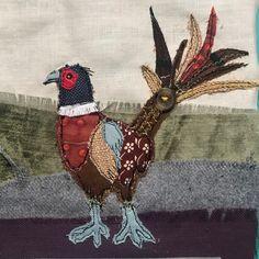 #pheasant #autumn #autumncolours #British #countryside #wildlife #birds