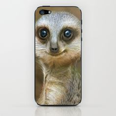 meerkat iPhone Skin by photoplace Iphone Skins, Owl, Bird, Animals, Animaux, Owls, Birds, Animal, Animales