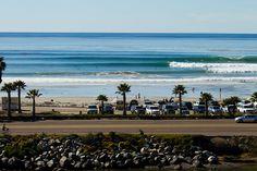 California Collective | SURFER Magazine