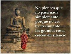 ...las grandes cosas crecen en silencio. #Frase #Buda
