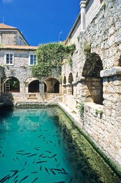 The #Pakleni islands in #Croatia are full of sumptuous medeival courtyards like this! #Transun