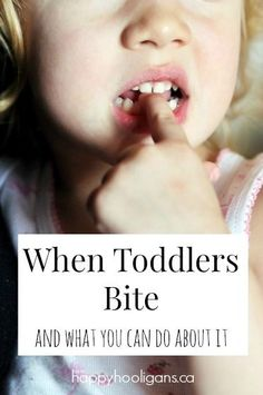 Toddler Biting: what to do and how to stop it - Happy Hooligans