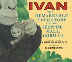APP Ivan: The Remarkable True Story of the Shopping Mall Gorilla by Katherine Applegate, illus. Brian Karas The story of the Newbery-winning The One and Only Ivan for a picture book audience. The Zoo, Non Fiction, Ivan The Gorilla, New York Times, Nonfiction Books For Kids, Literary Nonfiction, One And Only Ivan, Opinion Writing, Book Trailers