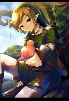 Link* Skyward Sword