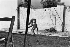 Josef Koudelka - Andalucia. Sevilla. 1978.