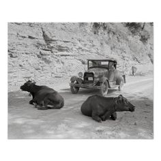 One of the hazards of driving over Kentucky mountain roads. Near Jackson, Breathitt County, Kentucky, September 1940 by Marion Post Wolcott. Appalachian People, Appalachian Mountains, Old Photos, Vintage Photos, My Old Kentucky Home, Coal Mining, Down South, American History, American Art