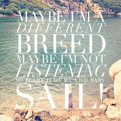 """maybe I'm a different breed""... sail - awolnation totally sounds like my buddy"
