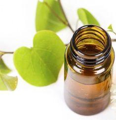 Candle Jars, Natural Remedies, Flora, Health, Medicine, Biochemistry, Plant, Health Care, Plants