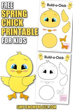From preschoolers & kindergartners to toddlers & even big kids - everyone loves a cute baby chick. So here's a free printable baby chick craft for your kids to enjoy. Choose from the color your own or a pre-colored spring chick template, then watch your kids make the magic happen as they cut and paste their way to a gorgeous baby chick craft. It's ready right now - so grab your free printable baby chick template & share in the spring crafts for kids! Farm Animal Crafts, Animal Crafts For Kids, Spring Crafts For Kids, Easy Crafts For Kids, Outdoor Activities For Kids, Fun Activities, Printable Crafts, Free Printable, Bunny Templates