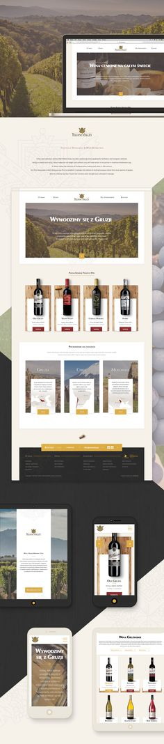Teliani Valley Winery. Project scope: new website design and development.