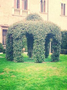 #Fiera #sposi #Castello di #Bevilacqua  Trasferta #novità #sposi #essedisposa #wedding #day #sunday #vr #verona #love #happy #locationdasogno