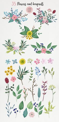 watercolor flowers and bouquets, floral illustration