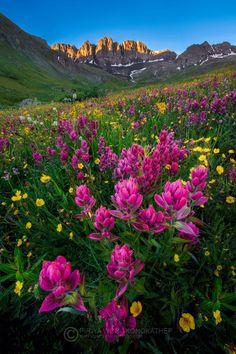 American Basin, Colorado | on 500px by Pete Wongkongkathep, Los Angeles, USA